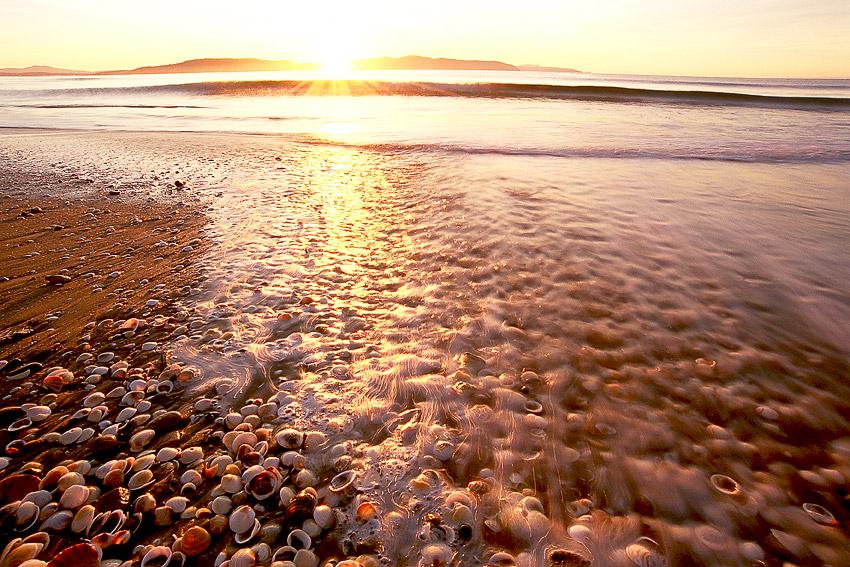 SUNRISE AND SHELLS, CLIFTON BEACH