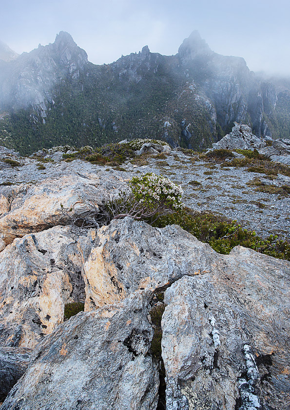 MISTY MOUNTAINS, FRANKLAND RANGE