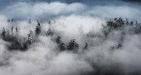 Morning Mist, Weld Valley