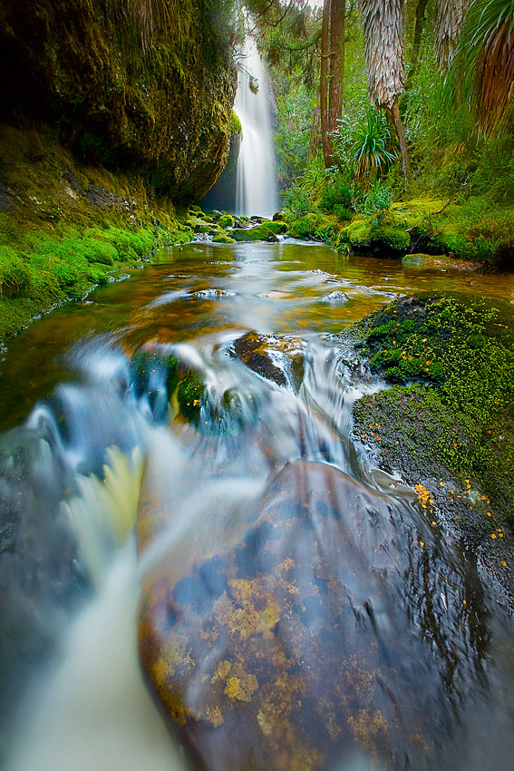 WATERFALL VALLEY 2, CRADLE MOUNTAIN