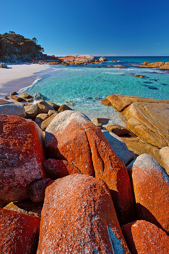 Cosy Corner 4, Bay of Fires