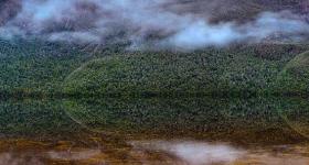 Reflections, Lake Judd