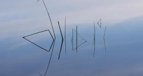 Reed reflection, Lake Gordon